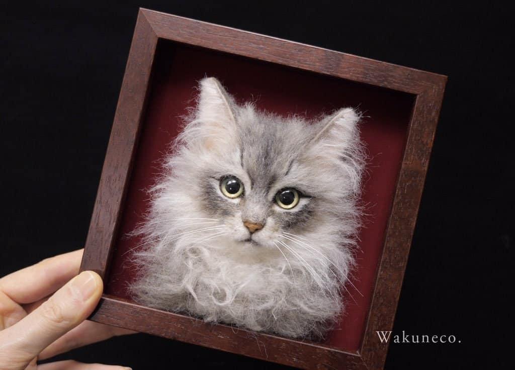 cats wakuneco 7