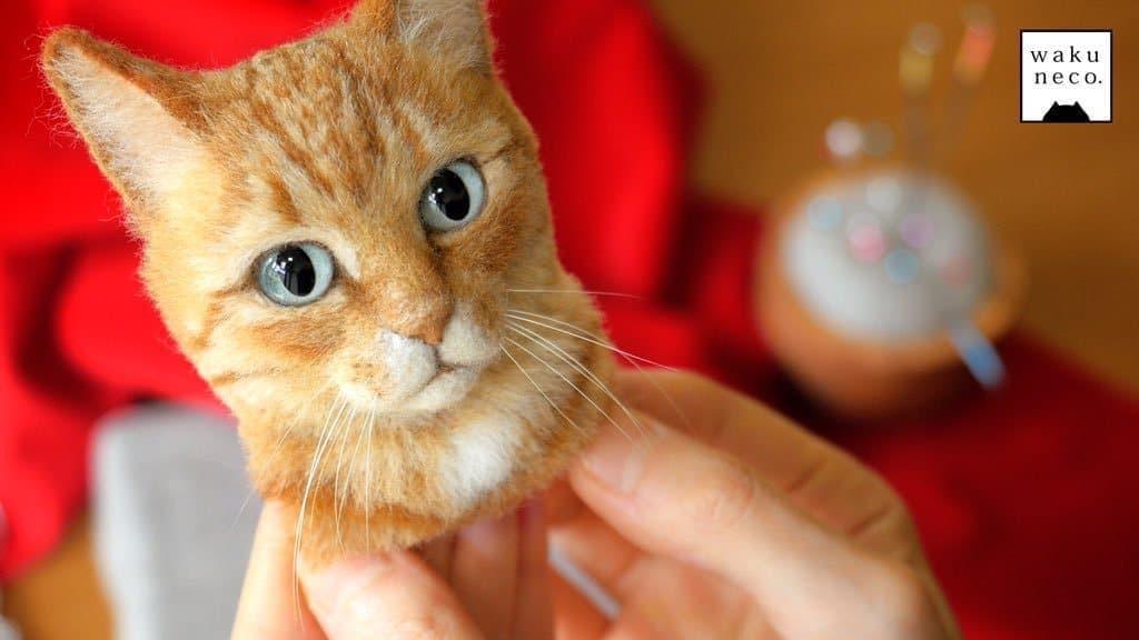 cats wakuneco 8