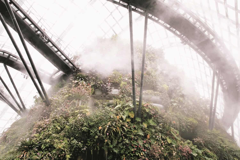 haarkon glasshouse greenhouse 2