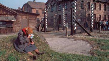 Poland in 1981 14
