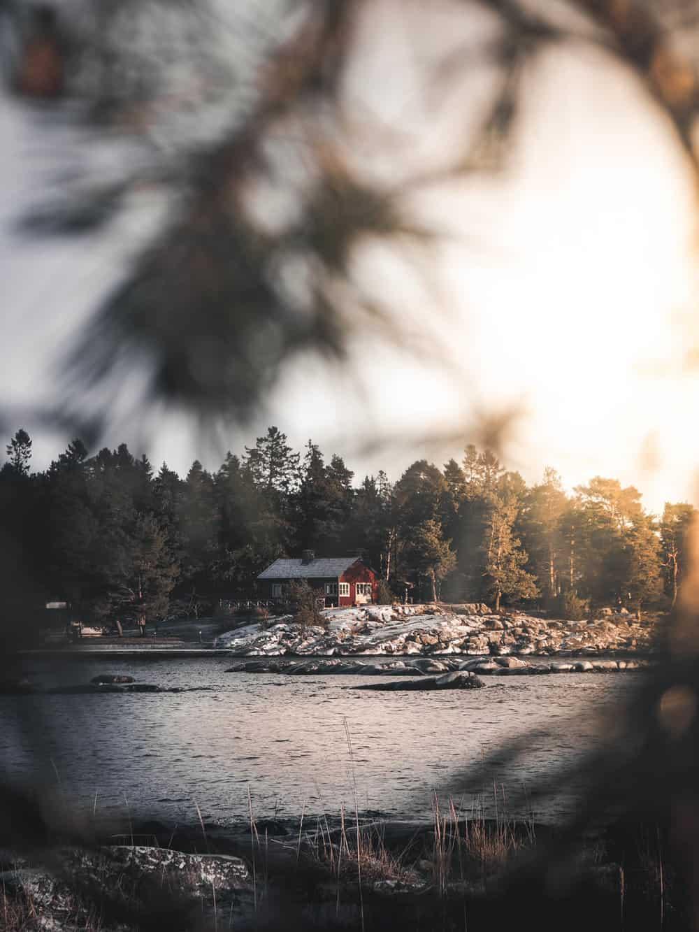 viggo lundberg sweden 25