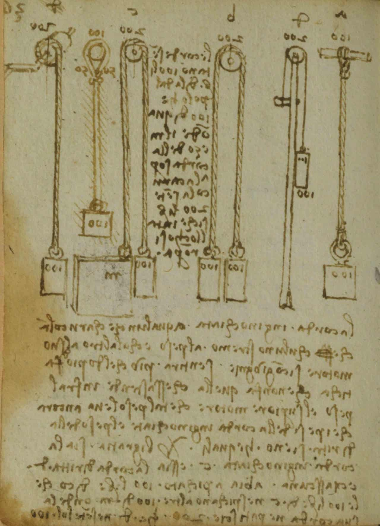 CodexForster 03
