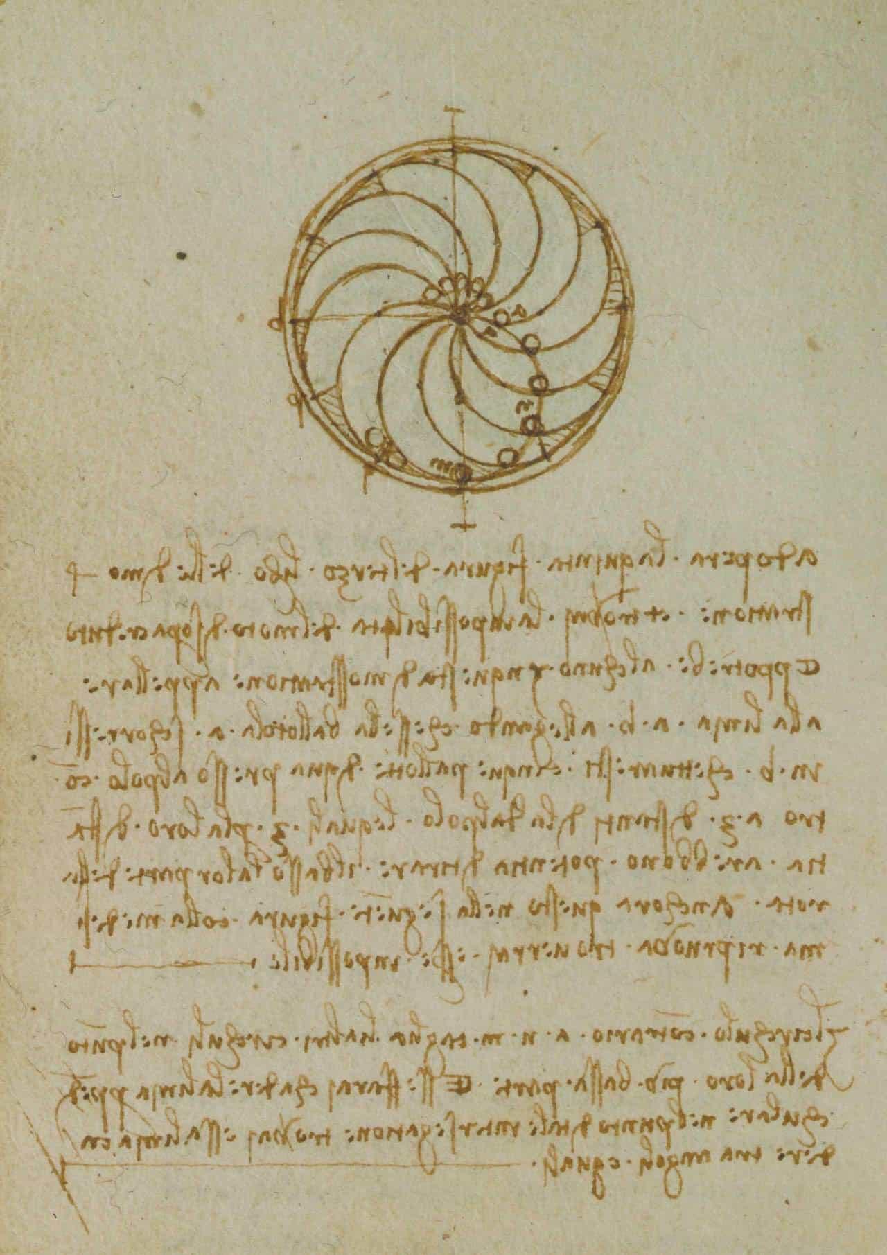 CodexForster 04