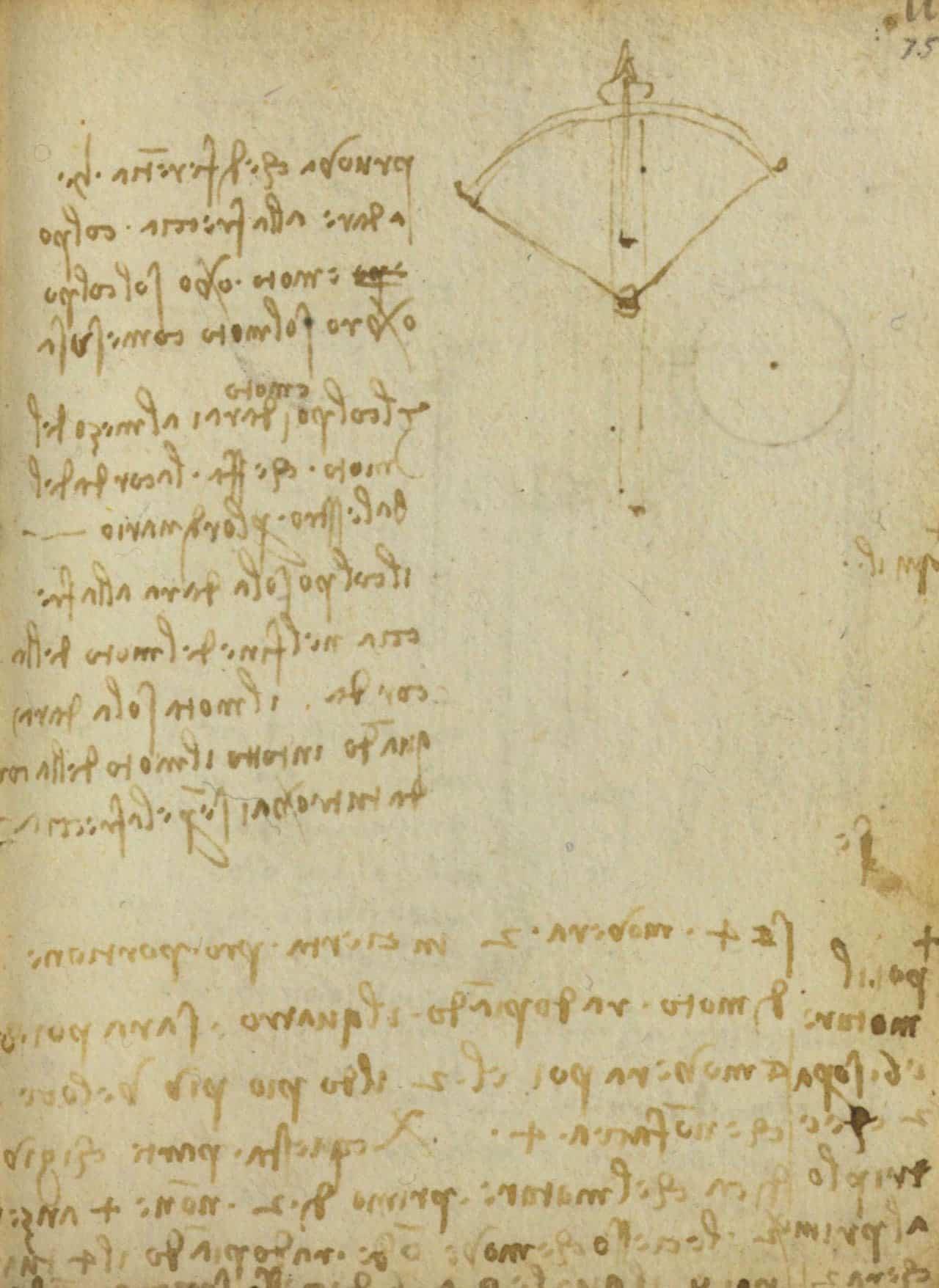 CodexForster 05