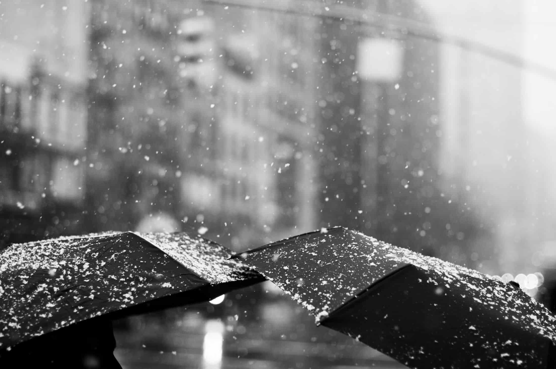 umbrellas 6