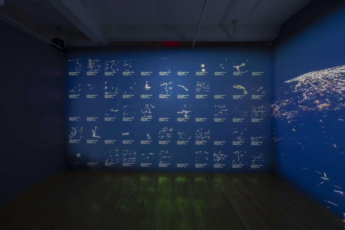 Haru Ji and Graham Wakefield Infranet 2018 AI AL data art installation Image 2