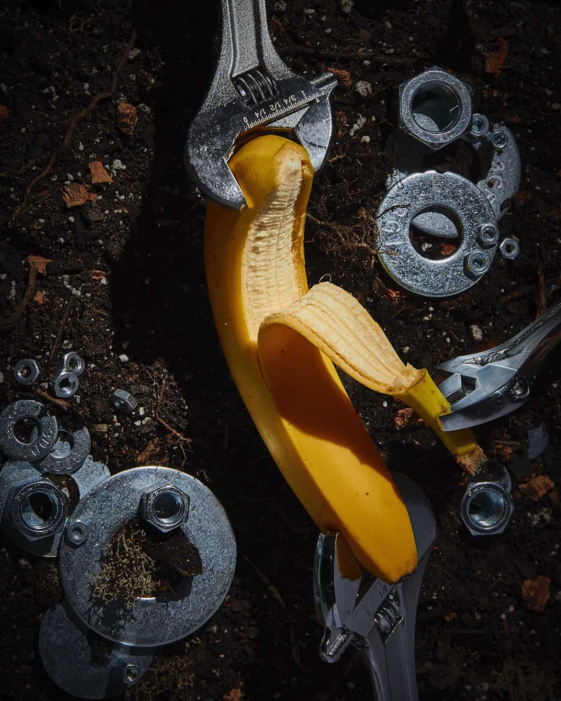 FOODWARE 01 Banana