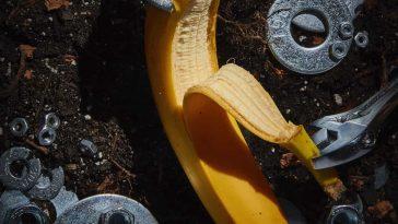 FOODWARE 01 Banana