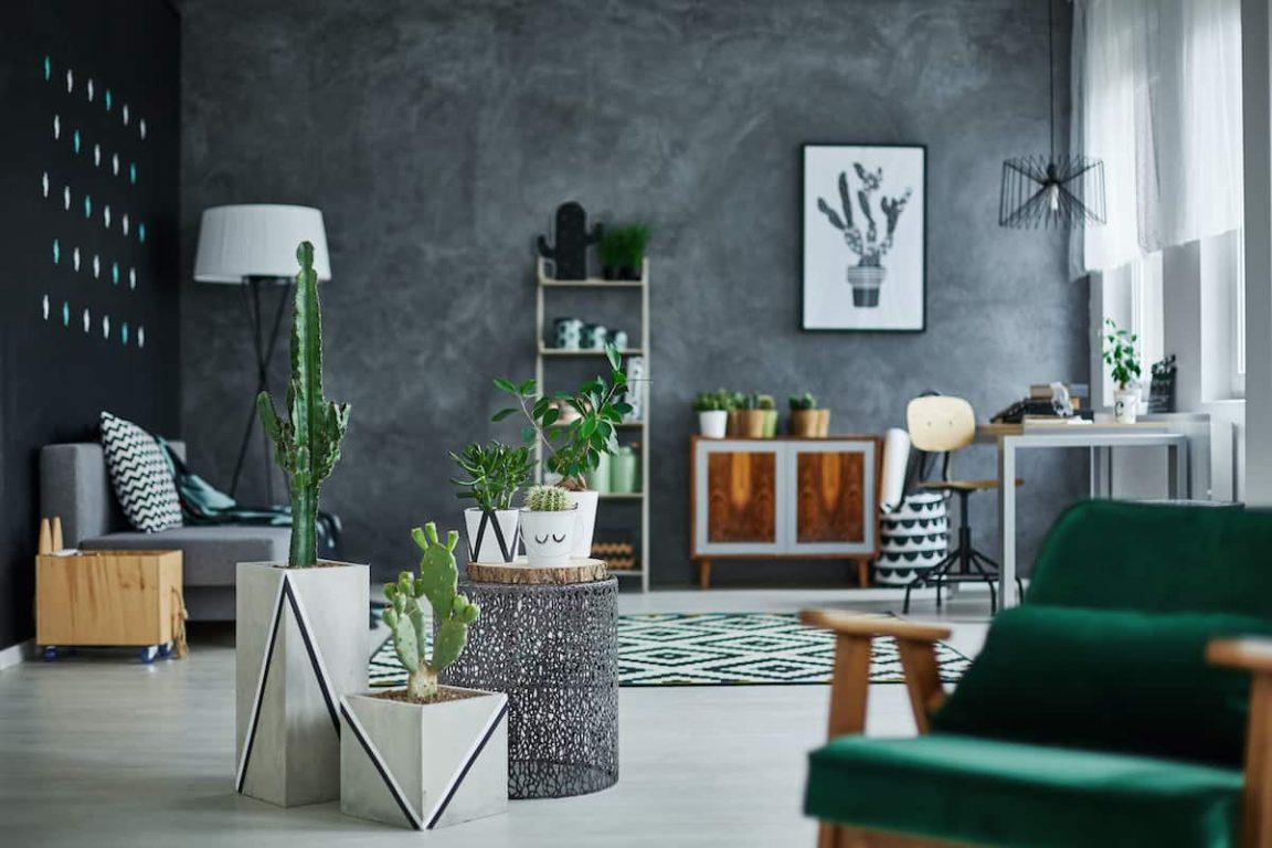 room with designer furniture PMJQ4L2