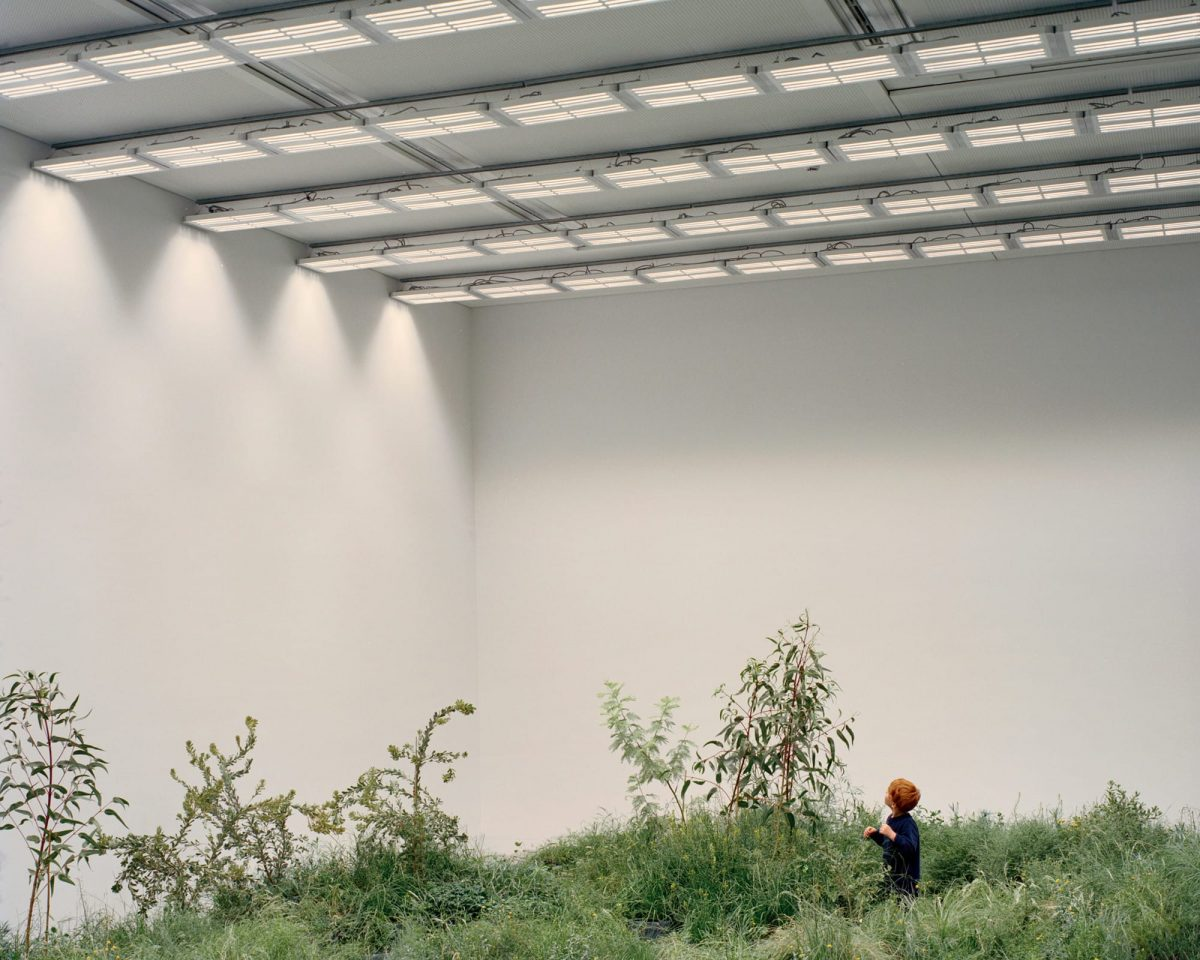 australian pavilion venice architecture biennale grasslands repair dezeen 2364 col 4