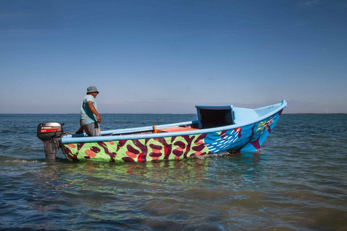 boa mistura boats marine biodiversity designboom 6
