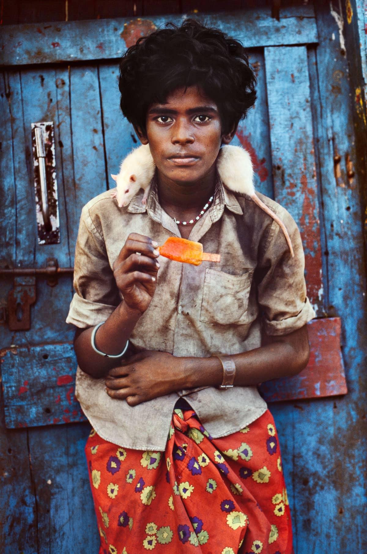 Steve McCurry Animals INDIA 10240NF9