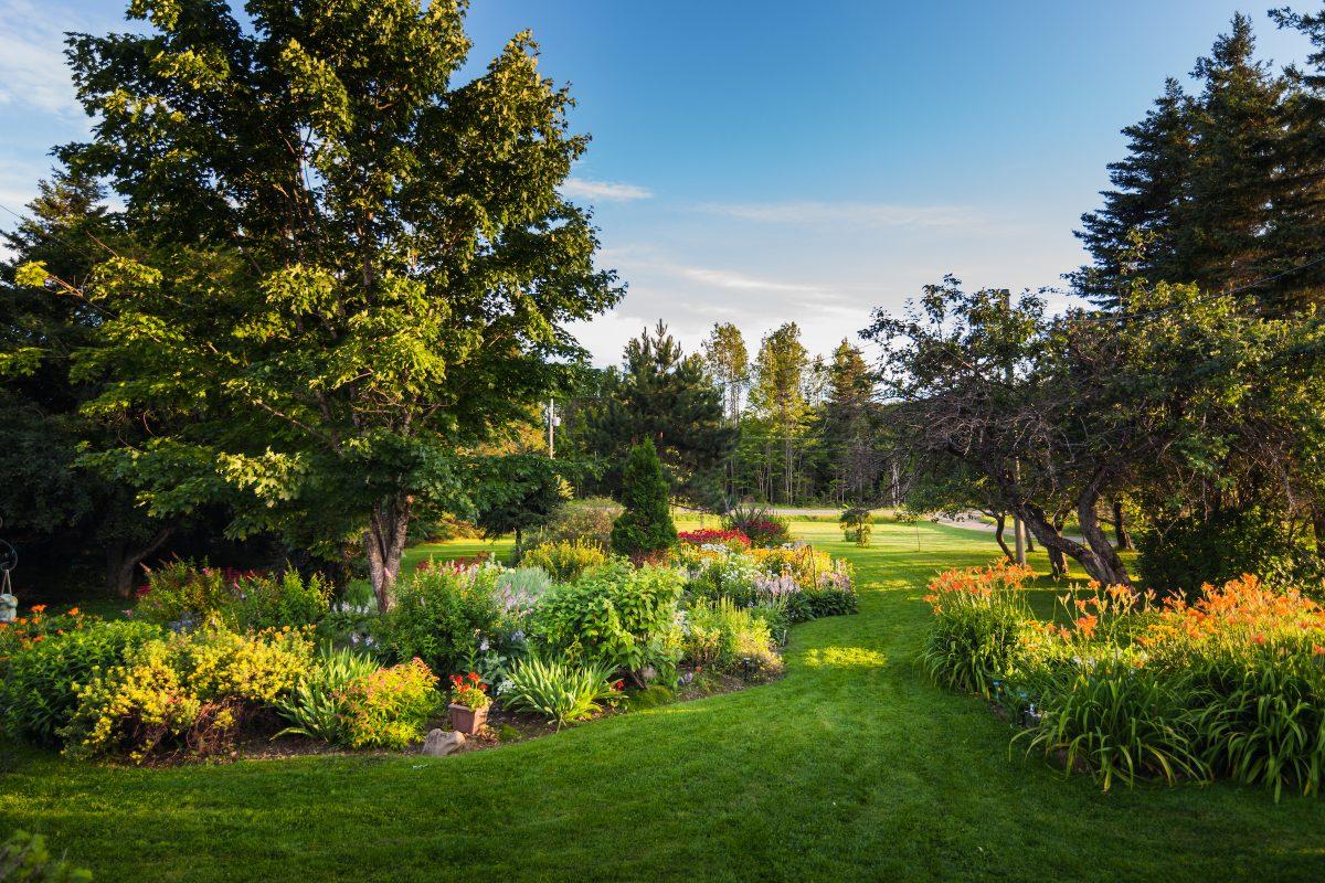 beautiful front yark garden PUMUTBJ