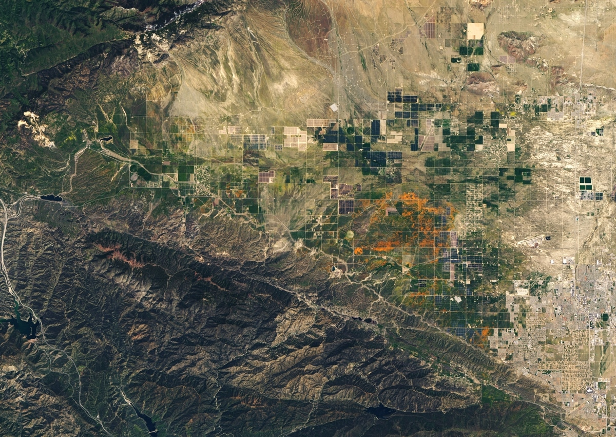 superbloom california poppies nasa1