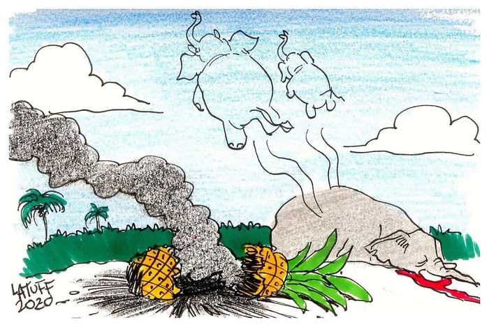 5ed9f342ea598 pregnant elephant dies eats pineapple filled with firecrackers artists pay tribute 5ed896023ad4e png  700