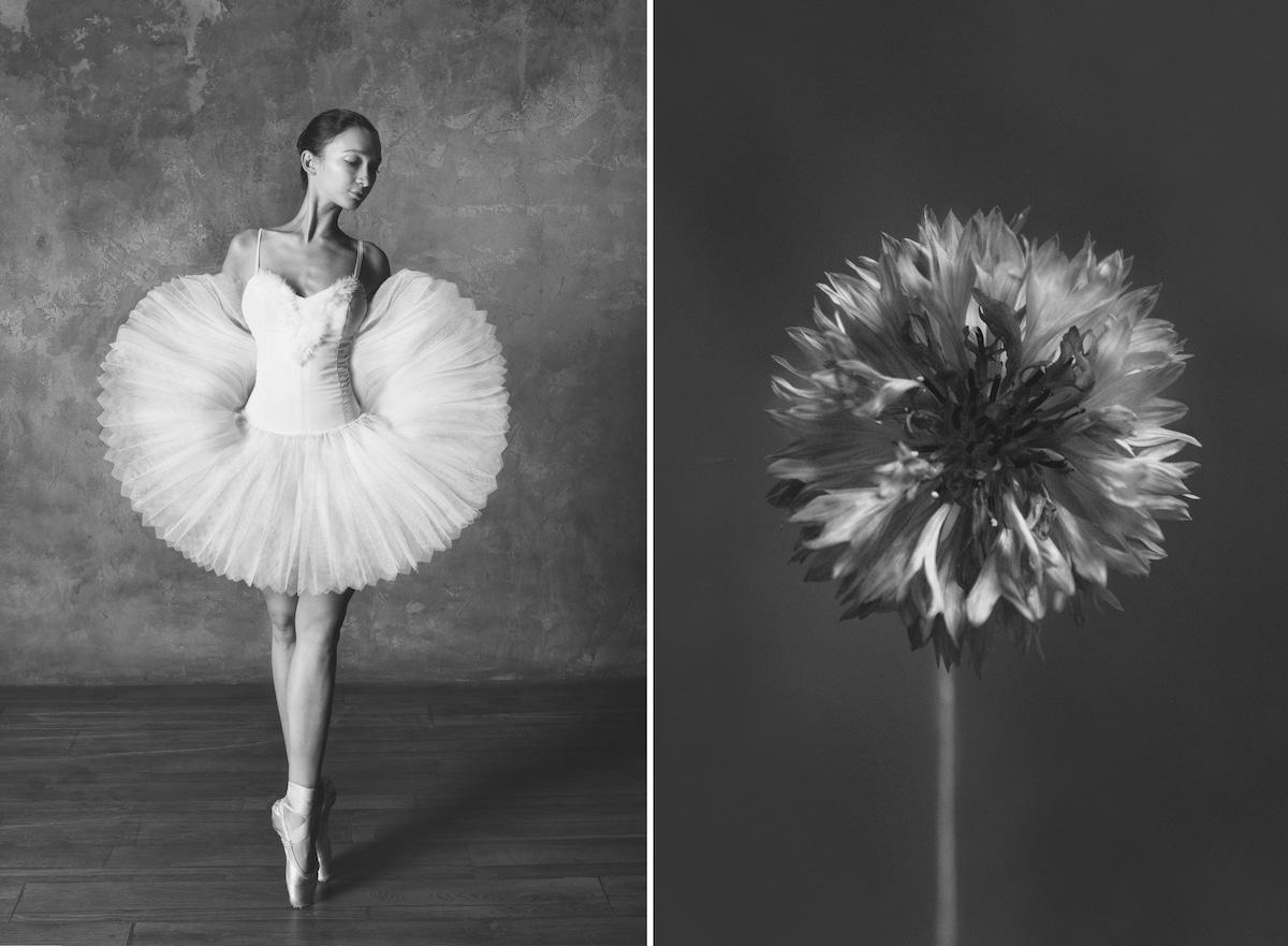 yulia artemyeva ballet flowers 1