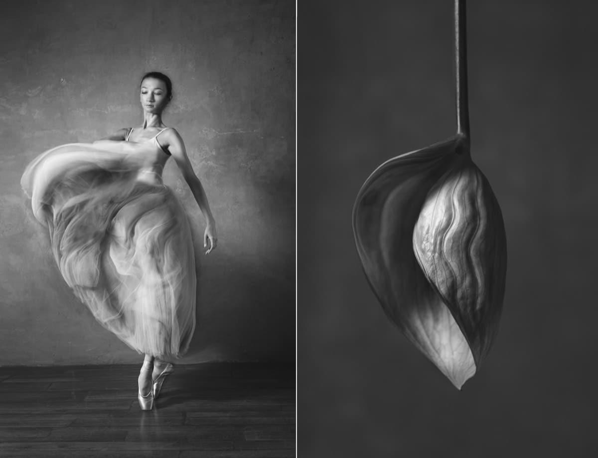 yulia artemyeva ballet flowers 10