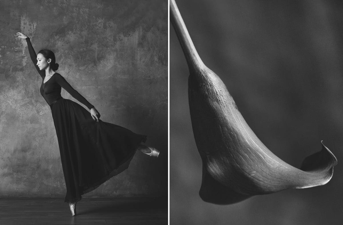 yulia artemyeva ballet flowers 11
