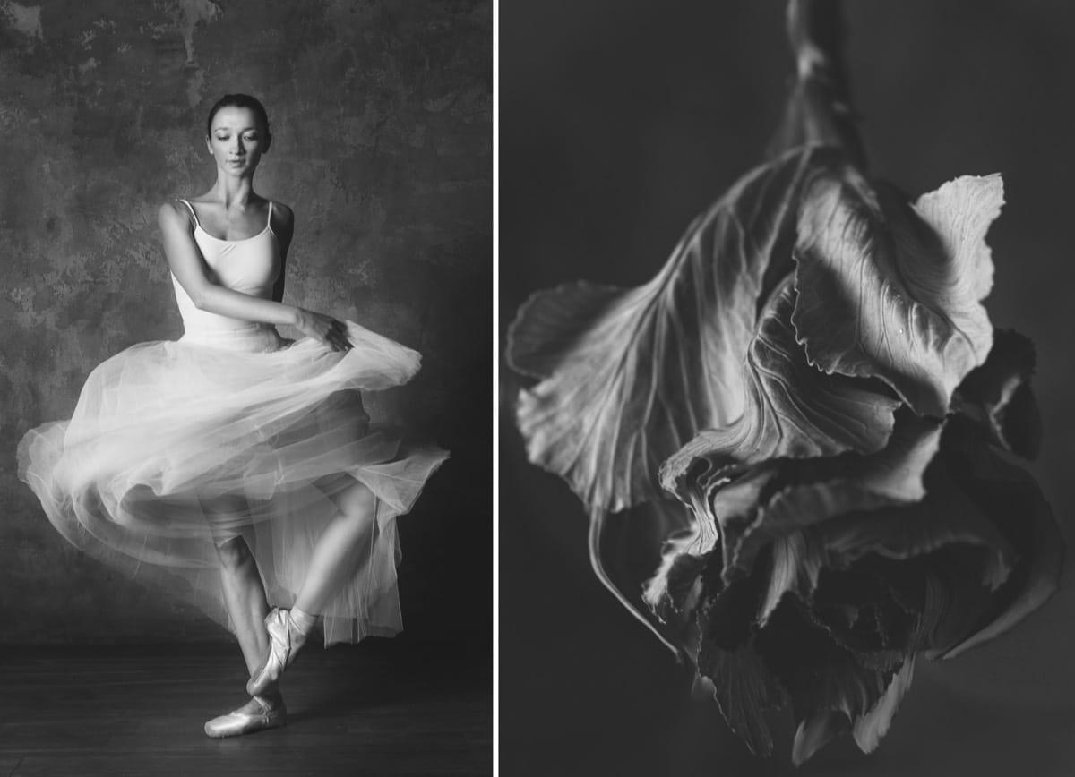 yulia artemyeva ballet flowers 14