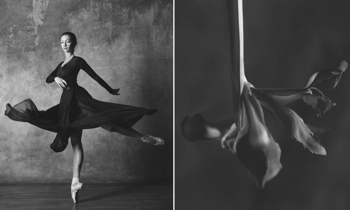 yulia artemyeva ballet flowers 4 1