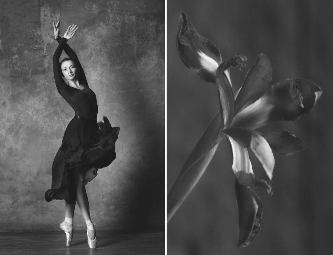 yulia artemyeva ballet flowers 6