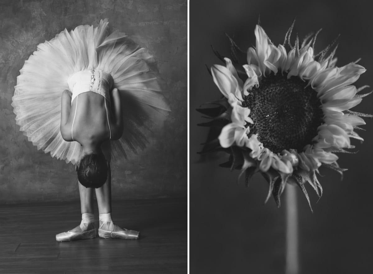 yulia artemyeva ballet flowers 7