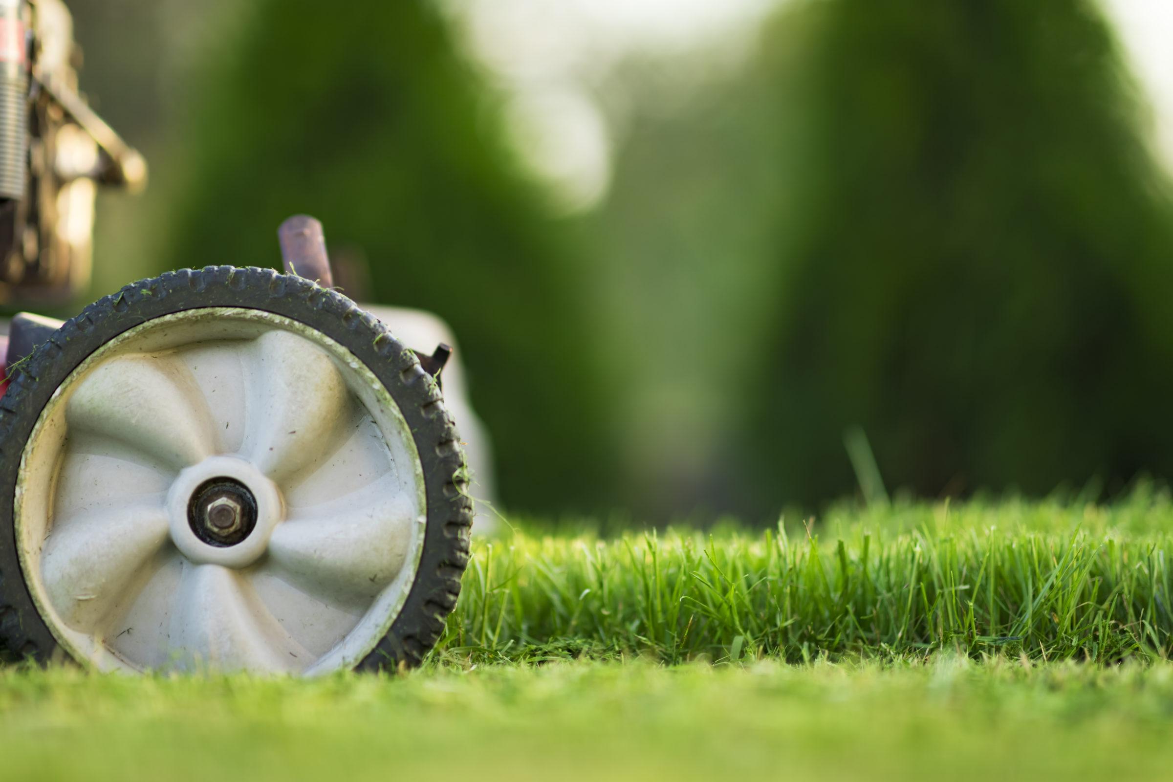 lawn mower FP4N9TS