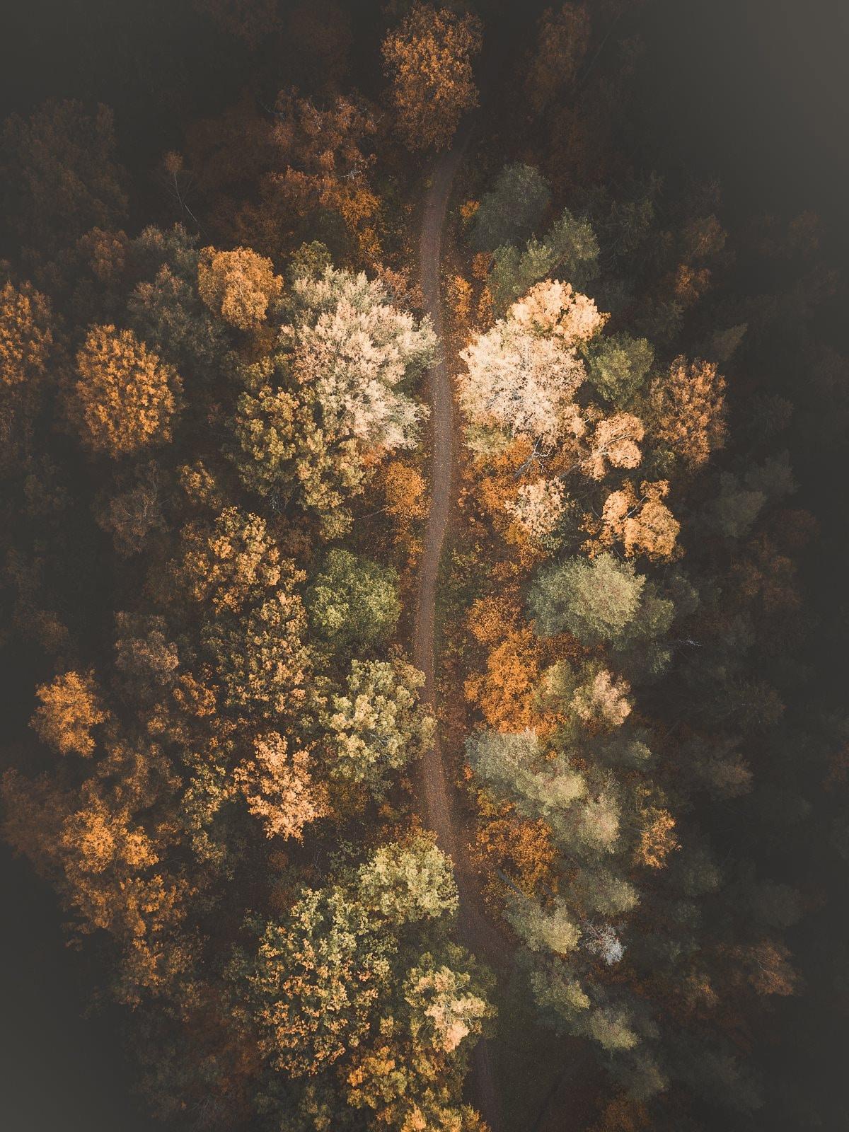 tobias hagg aerial photography 7