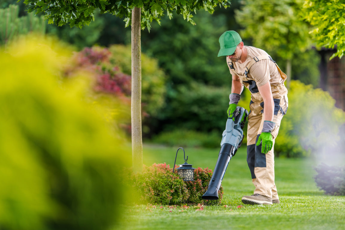 gardener with cordless leaf blower cleaning backya H3AR7CK