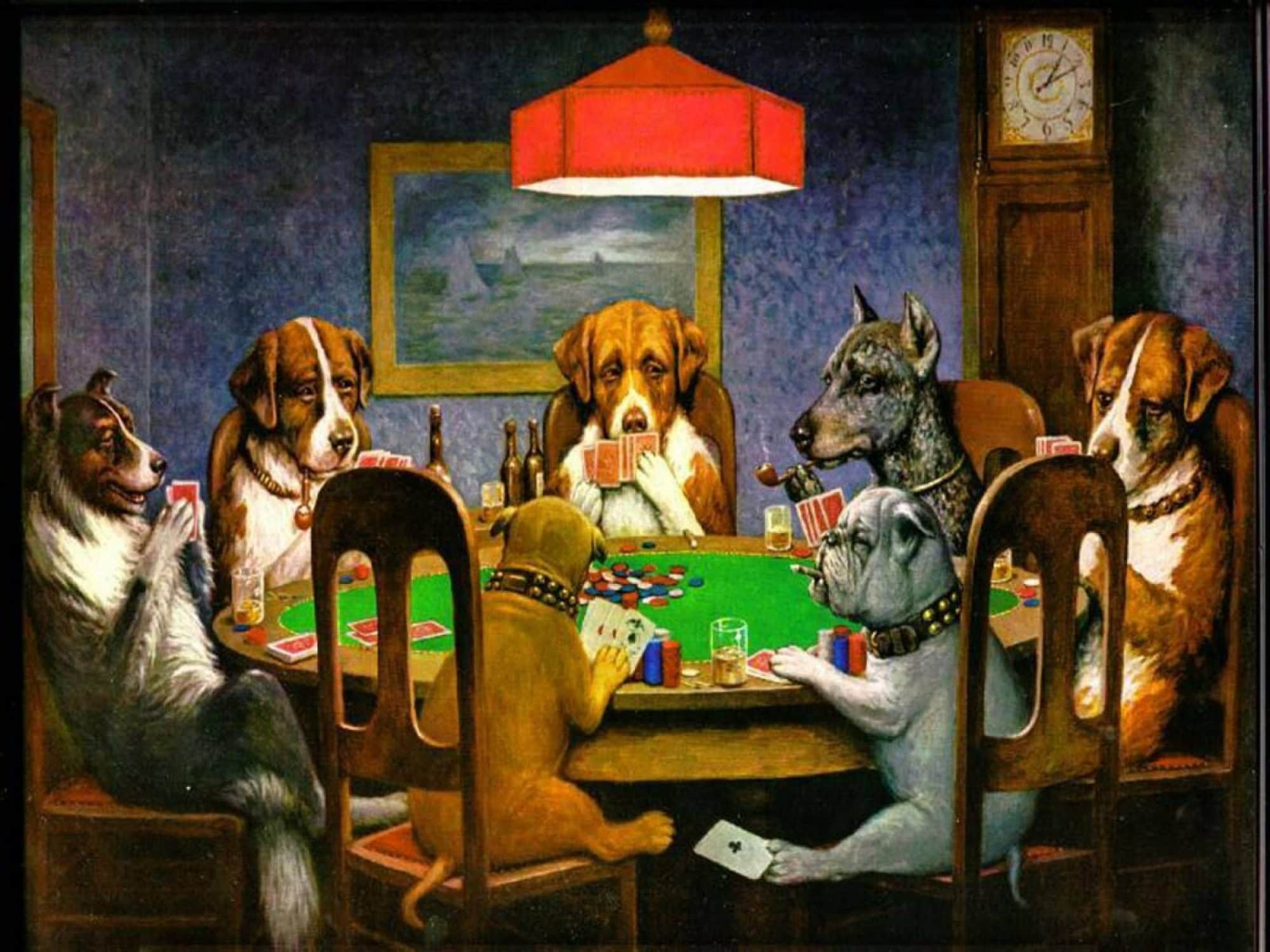 cropped Dogs Playing Poker