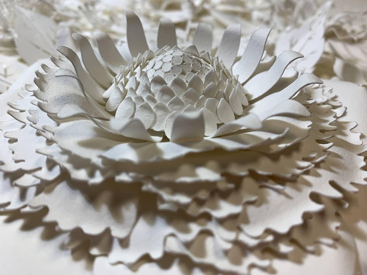 tara lee bennett lush paper paper flowers 1