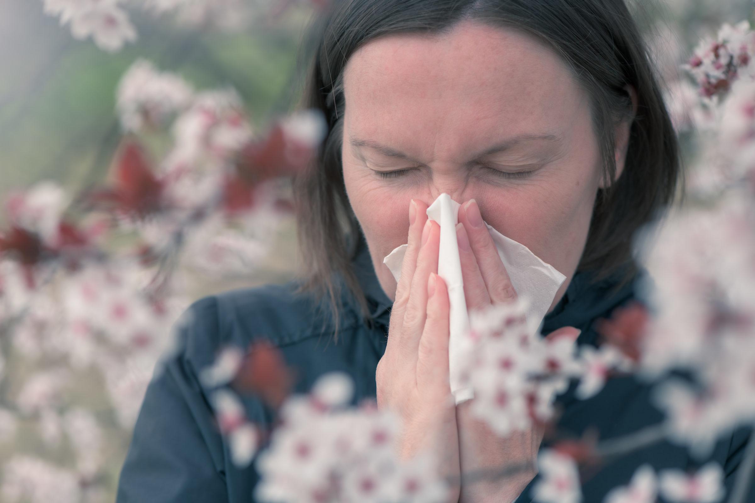 tree pollen allergy in springtime concept SJF2A7X