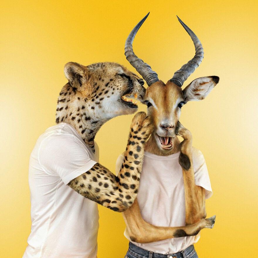 spiel sinn CheetahImpallah 60eeac98681e1 880