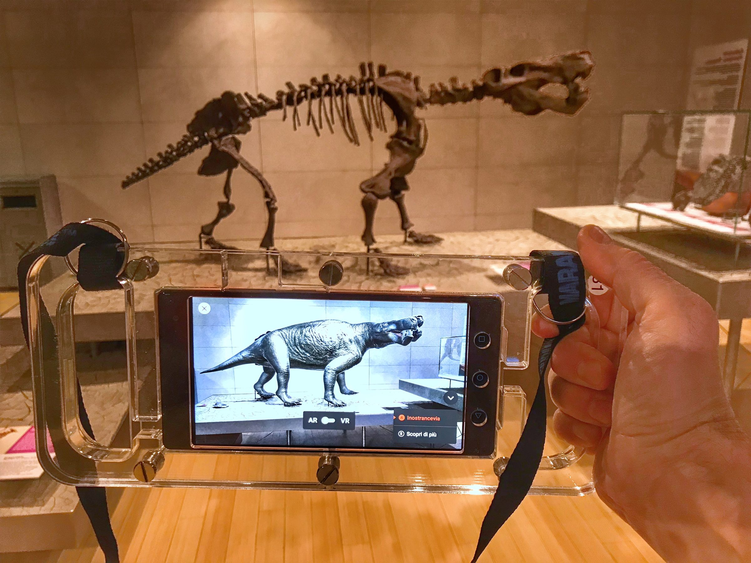 dinosaur skeleton and augmented reality YJXT6HB