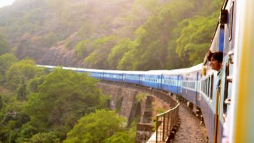 moving train near trees