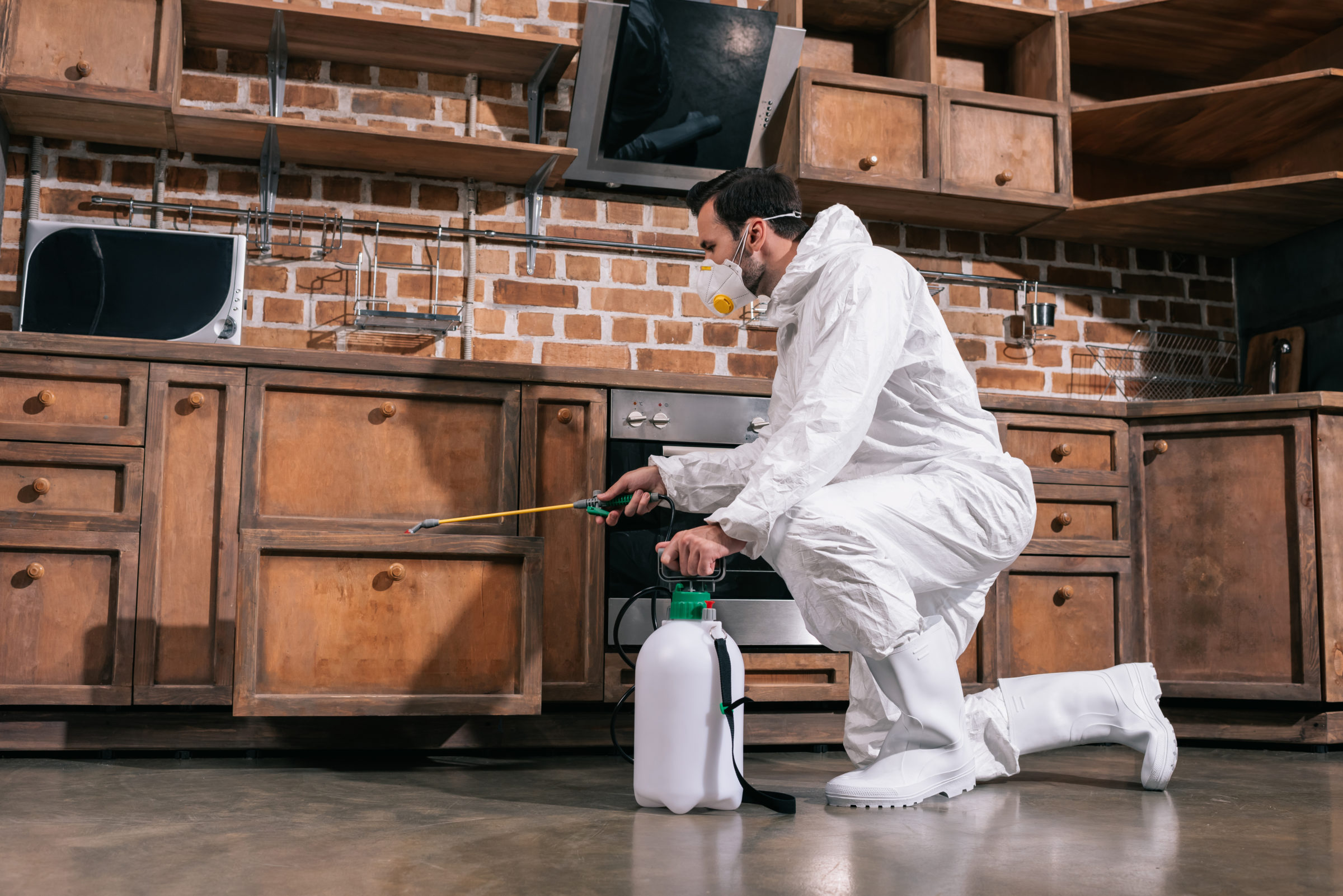 pest control worker spraying pesticides in cabinet H5F6EXA